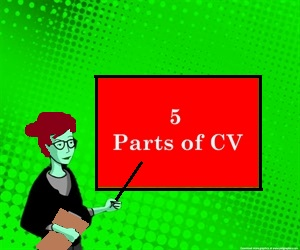 5 Critical Parts of Resume / CV