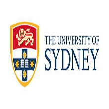 Software Engineering the university of sydney foundation program