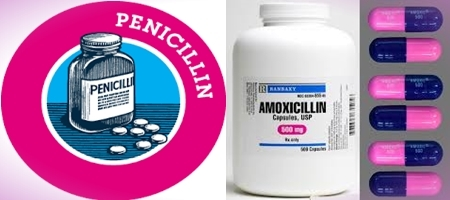 Difference between Penicillin and Amoxicillin